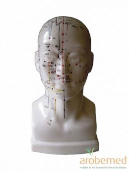 Akupunkturmodell Kopf